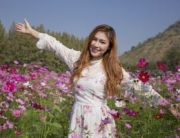 beautiful woman with the cosmos flower field